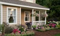 Înfrumusețează-ți intrarea în casă cu ajutorul plantelor! Gasește aici 12 sugestii Iti prezentam 12 sugestii prin