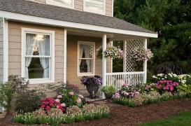 Înfrumusețează-ți intrarea în casă cu ajutorul plantelor! Gasește aici 12 sugestii