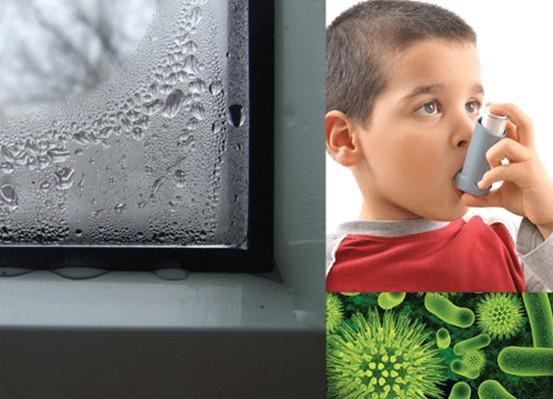 Calitatea aerului - importanta unui sistem de ventilatie