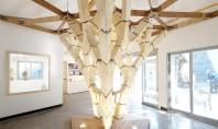 Structura care demonstrează utilitatea ciupercilor în construcții In vreme ce unii arhitecti au experimentat utilizarea miceliului