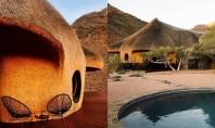 Cuibul o locuință inspirată de o capodoperă arhitecturală din natură Locuinta organica complet off the grid