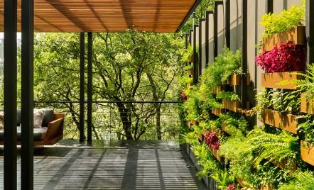 Grădinile verticale transformă această casă din Mexico City într-o oază exotică