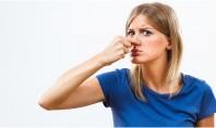 Cum scapi de mirosul de mucegai din casă Simturile olfactive ale oamenilor sunt destul de dezvoltate