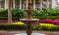 Vara ideala flori fantani si efecte de apa Vara este anotimpul in care activitatea ta ca
