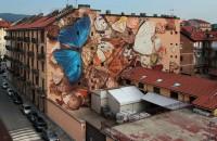 Clădiri transformate în vitrine uriaşe cu fluturi