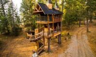 Patru arbori cresc în interiorul acestei cabane Proprietarii casei de vacanța Montana Treehouse Retreat au dus
