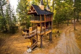 Patru arbori cresc în interiorul acestei cabane