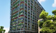O cladire industriala va fi transformata intr-un spatiu modern cu terase pline cu vegetatie O cladire