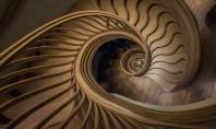 O scară care se ridică asemenea unui copac în interiorul unui nou restaurant londonez Numita StairStalk