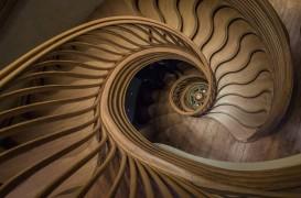 O scară care se ridică asemenea unui copac în interiorul unui nou restaurant londonez