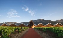 Arhitectura vinului: 7 dintre cele mai frumoase crame moderne din lume