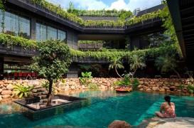 O casa ce pare invadata de vegetatia luxurianta