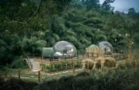 Poți dormi printre elefanți în aceste bule transparente din mijlocul junglei