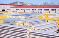 TeraSteel - numărul 1 pe piața panourilor termoizolante în 2019
