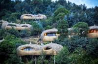 Ecoturism de înaltă clasă cu vile amplasate în copaci