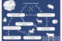 Crești purcei, vite sau oi, hop, te ajutăm și noi!