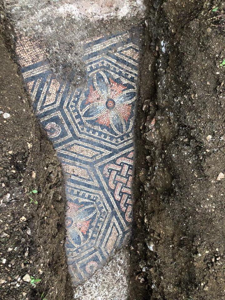 Mozaic din vremea Imperiului Roman descoperit în stare excelentă sub o vie