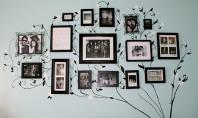 Stickere decorative sau camere cu personalitate Stickerele decorative sunt o solutie originala usor de instalat si