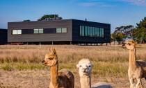 O casa izolata pe o insula functioneaza integral cu energie solara