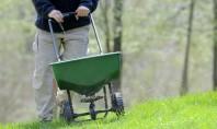 Fertilizarea gazonului - afla de ce cand si cum sa o faci Daca in urma cu