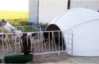 Soluții ecologice pentru adăpostirea animalelor în aer liber