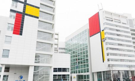 Haga devine lacasul pentru 'Cea mai mare pictura a lui Mondrian' din lume