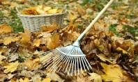 Lucrări în grădină - ce ai de făcut în noiembrie? Iata ce este bine sa faci