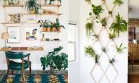 7 idei pentru spațiul gol de pe perete pe cât de frumoase pe atât de folositoare