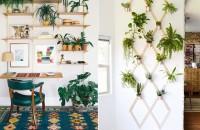 Idei pentru spațiul gol de pe perete, pe cât de frumoase, pe atât de folositoare