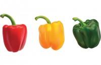 Cum se cultivă ardeii: 10 sfaturi ușor de aplicat în grădină sau seră