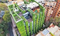 Cea mai mare gradina verticala din lume infloreste cu 85.000 de plante
