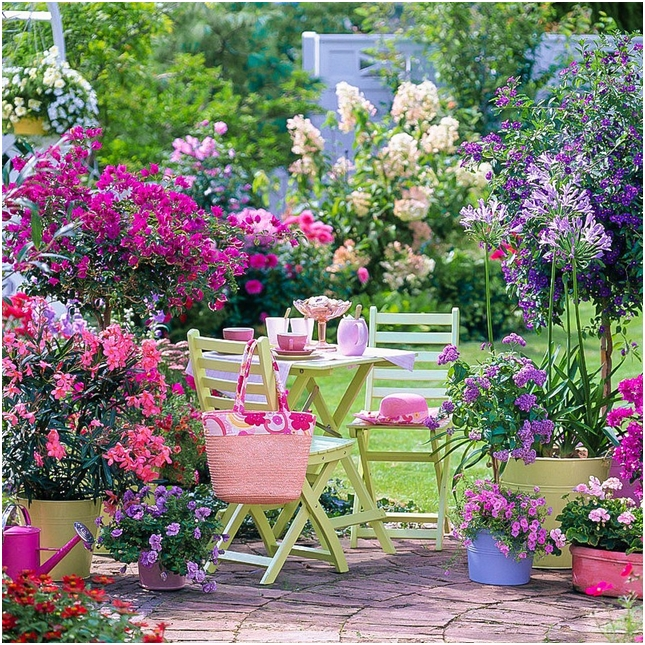 Idei şi păreri de la clienţii ce au cumpărat de la Grădinamax pentru o grădină sustenabilă