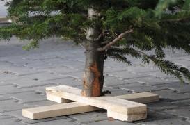 Cateva idei practice pentru suporturile de pomi de Craciun