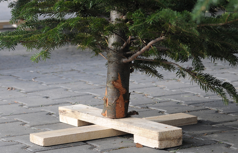 Câteva idei practice pentru suporturile de pomi de Crăciun