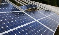 Regenerabilele o treime din capacitatea instalată de producere a energiei electrice Conform datelor Agentiei Internationale de