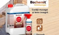 Soluții pentru îndepărtarea mucegaiului și curățarea lemnului de la Bochemit Una dintre cele mai frecvente ciuperci