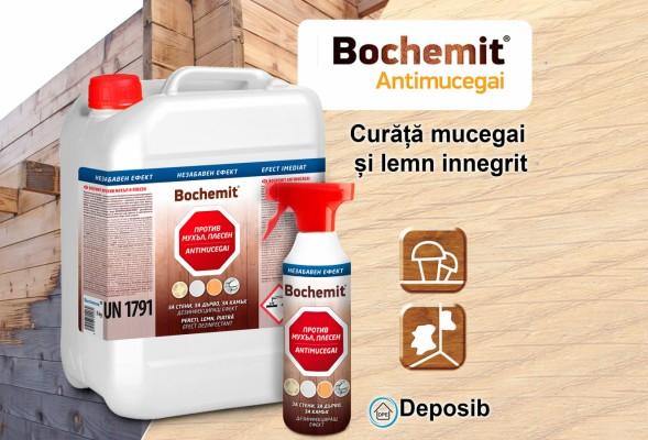 Soluții pentru îndepărtarea mucegaiului și curățarea lemnului de la Bochemit