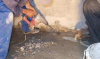 Cum simplifică Sistemul Penetron hidroizolarea Materialele Penetron se aplica pe suprafete umede din beton atat pe