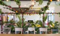 Creativitate înainte de toate - o deviză numai bună pentru un spațiu de birouri Cu totii