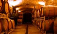 Cum poţi controla umiditatea în crame pentru a păstra calitatea vinului Atunci cand depășește nivelul optim