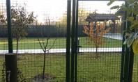 10 motive pentru a alege o poarta pietonala Garden