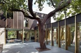 O casă prietenoasă cu mediul construită în jurul unui arbore vechi de 100 de ani