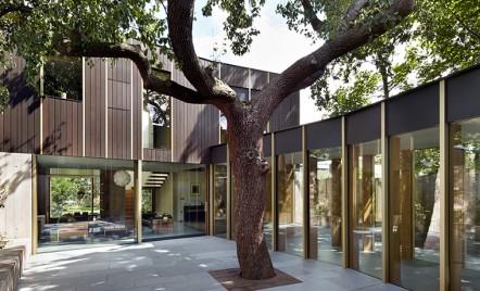 Casa prietenoasa cu mediul construita in jurul unui arbore vechi de 100 de ani