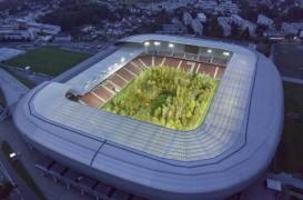 Pădurea din mijlocul stadionului