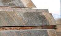 Tâmplărie exterioară și interioară Ce tipuri de lemn se folosesc DOXAR produce tâmplărie exterioară și interioară