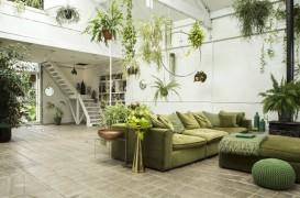 Greenery, culoarea anului 2017 - cum o integrezi in amenajarea locuintei?
