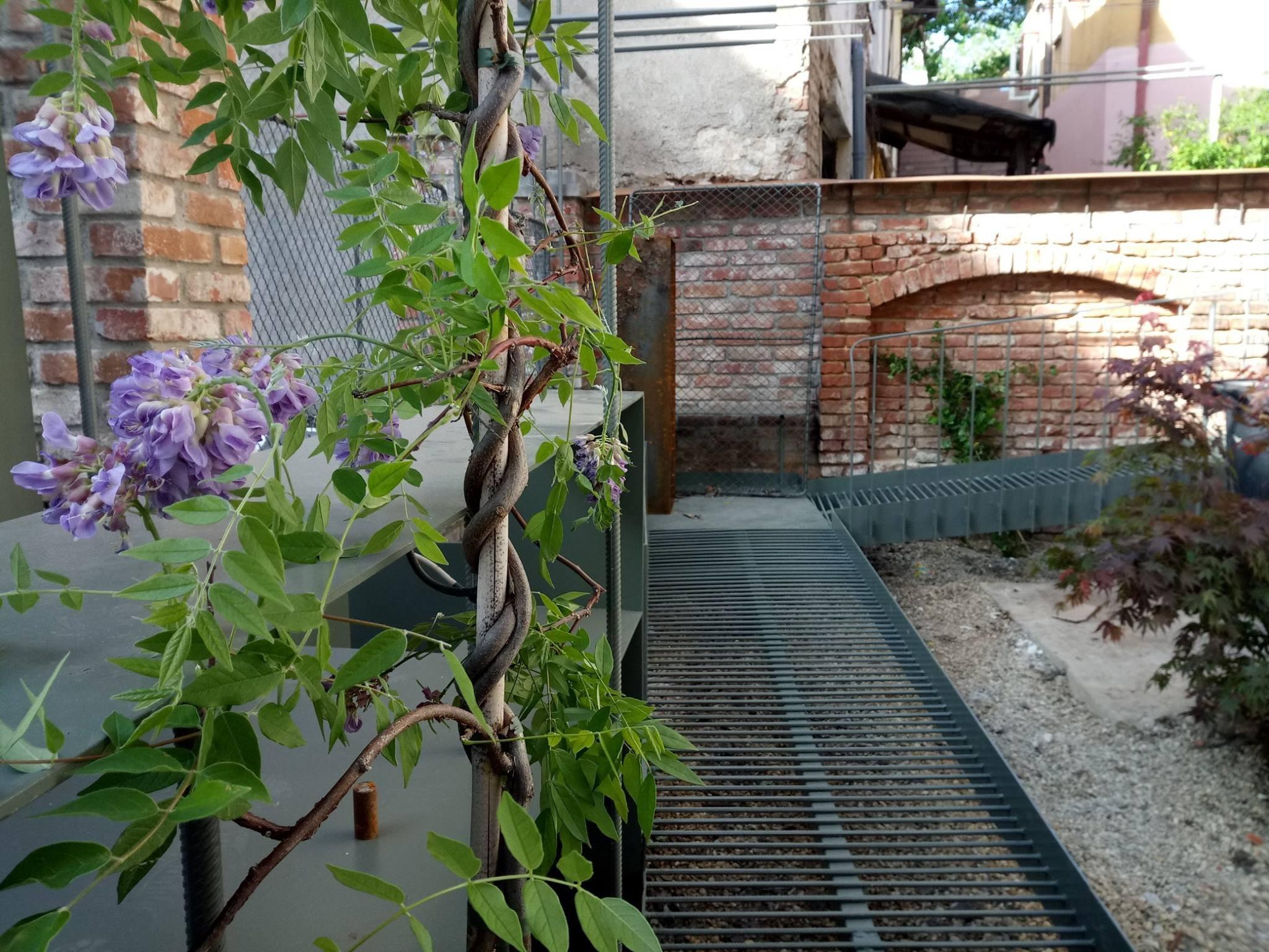 Concluziile Atelierelor de intervenție urbană organizate de Ordinul Arhitecţilor Bucureşti