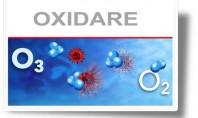 Cum acţionează ozonul pentru a purifica aerul şi apa? Ozonul va oxida compusi organici precum acizii