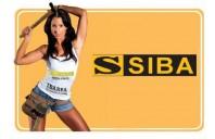 Unelte pentru constructii SIBA