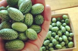 Fructe și legume mai puțin cunoscute, pe care le poți planta în grădină